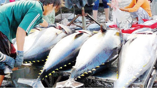 Produits aquatiques: L'UKVFTA stimulera les exportations vietnamiennes vers le marche britannique hinh anh 1
