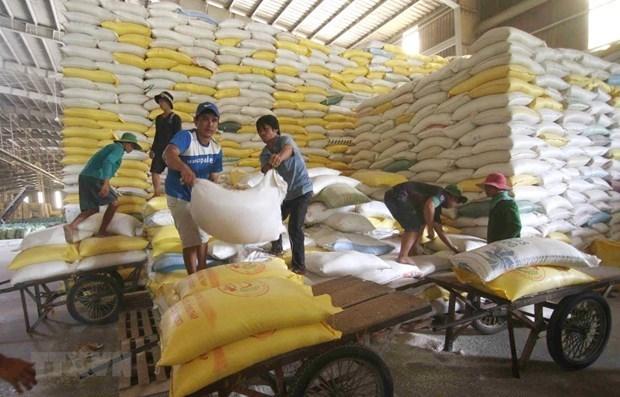 Le prix du riz vietnamien a l'exportation atteint son plus haut niveau en 9 ans hinh anh 1