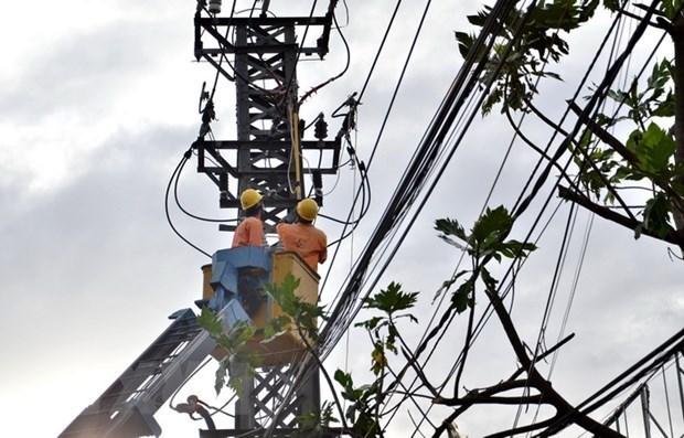Le Vietnam vise un marche de l'energie sainement competitif hinh anh 1