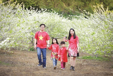 Moc Chau et sa saison des pruniers hinh anh 2