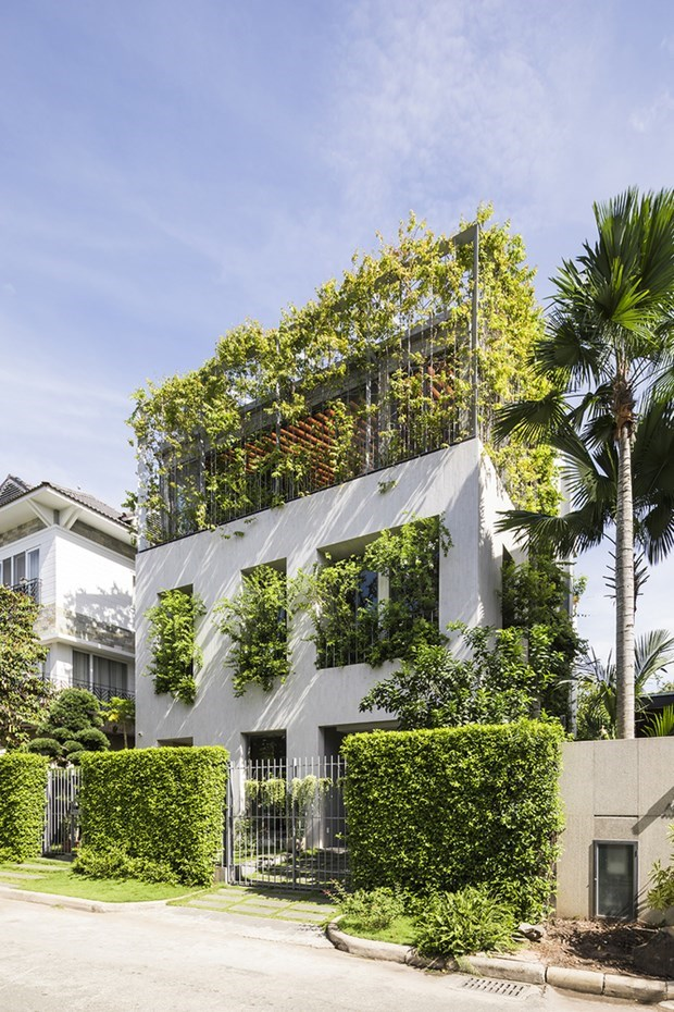 Vo Trong Nghia Architects recoit un prix asiatique hinh anh 1