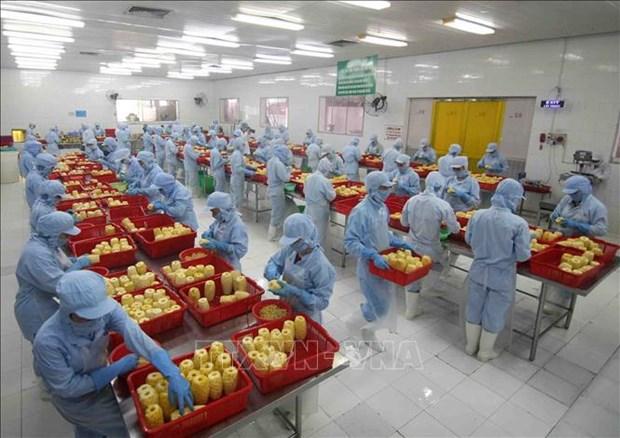 RCEP, opportunite de developper les chaines de valeur des produits agricoles hinh anh 1