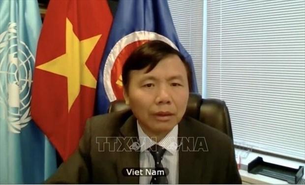 Le Vietnam souligne l'importance de la promotion du droit international hinh anh 1