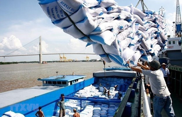 Le prix a l'exportation du riz vietnamien a un niveau eleve hinh anh 1