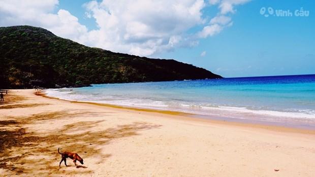 La plage de Dam Trau (Con Dao) parmi les plus belles du monde hinh anh 1