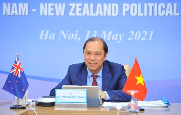 Consultation politique entre le Vietnam et la Nouvelle-Zelande hinh anh 1
