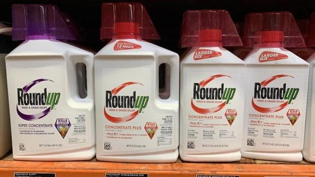 Proces du Roundup : une condamnation de Monsanto confirmee en appel en Californie hinh anh 1