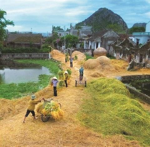 Pour et contre le village traditionnel hinh anh 1
