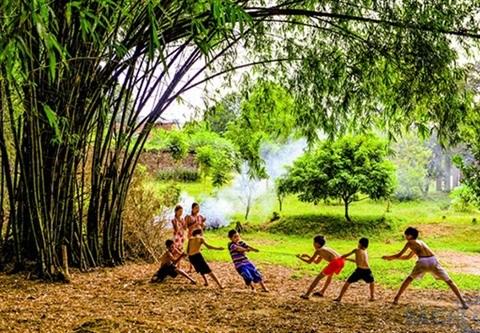 Pour et contre le village traditionnel hinh anh 2