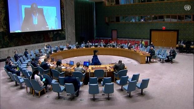 Le Vietnam continuera sa contribution aux activites de l'ONU au Soudan du Sud hinh anh 1