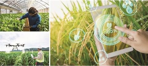 Les agriculteurs au cœur de la transition numerique hinh anh 1