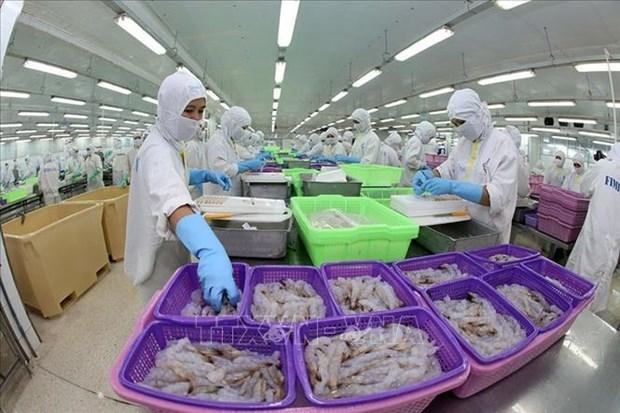 Le Vietnam devient le 4e fournisseur de crevettes surgelees en Russie hinh anh 1