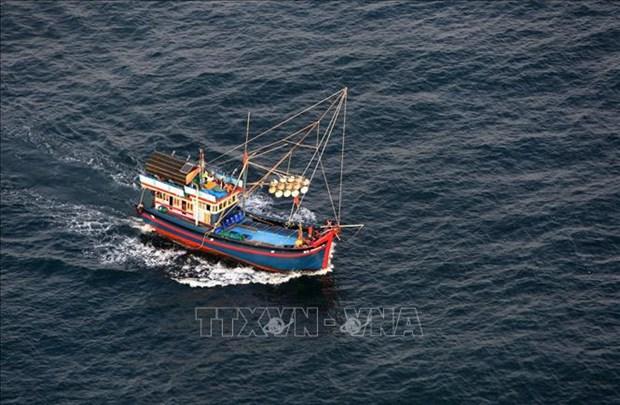 Sanctions severes des actes d'amener des navires a pecher illegalement a l'etranger hinh anh 1