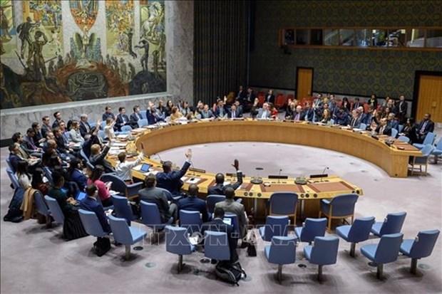 Le Vietnam affirme son role actif au Conseil de securite de l'ONU hinh anh 1