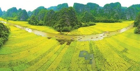 Ninh Binh ambitionne de devenir une destination majeure hinh anh 1