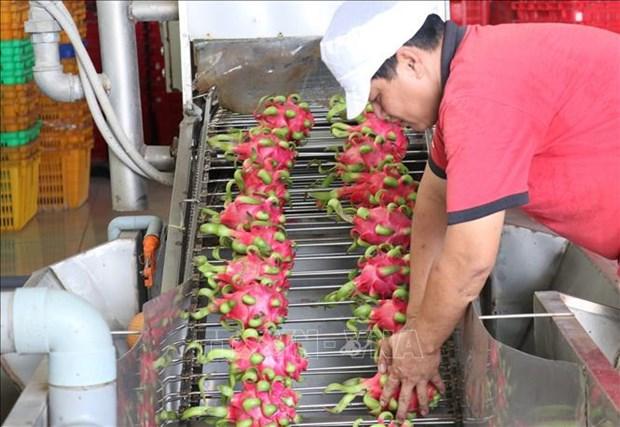 Pour exporter davantage des produits agricoles vietnamiens vers le Royaume-Uni hinh anh 1