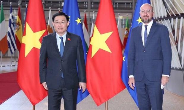 La presidente de l'AN Vuong Dinh Hue rencontre le president du Conseil europeen hinh anh 1
