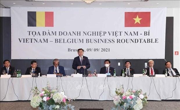 Le Vietnam vise un developpement rapide et durable, dit le chef de l'AN hinh anh 1