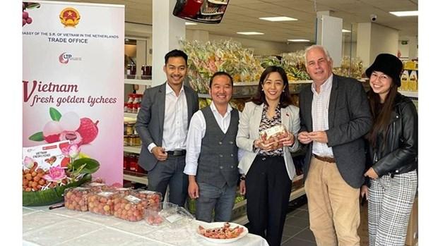La diaspora vietnamienne contribue a promouvoir les produits agricoles vietnamiens hinh anh 1