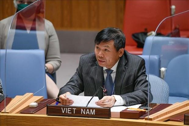 ONU : le Vietnam appelle les parties concernees au Yemen a reprendre le dialogue hinh anh 1