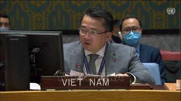 Le Vietnam appelle a soutenir le Soudan pour acceder aux ressources financieres internationales hinh anh 1