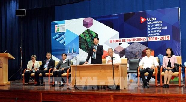 De grands potentiels pour le commerce Vietnam-Cuba hinh anh 2