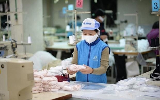 L'exportation de masques medicaux repart a la hausse hinh anh 1