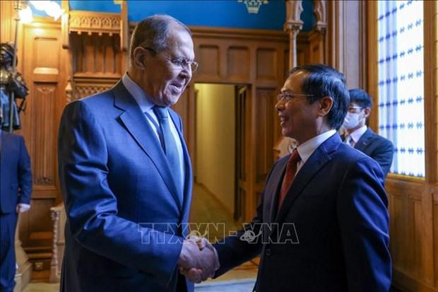 Approfondissement du partenariat strategique integral Vietnam-Russie hinh anh 1