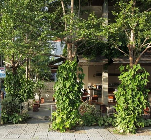 Un cafe vert a Hoi An apparait sur le magazine americain Archdaily hinh anh 1
