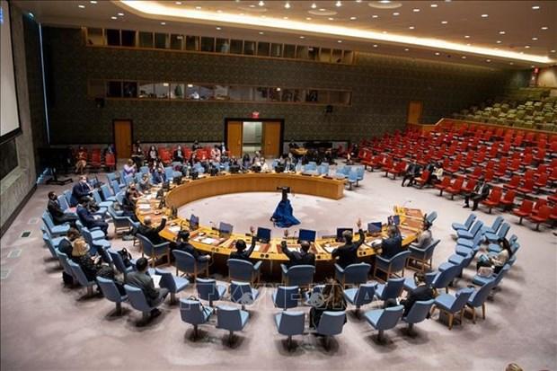 ONU : le Vietnam apprecie l'execution de la Convention sur l'interdiction des armes chimiques hinh anh 1