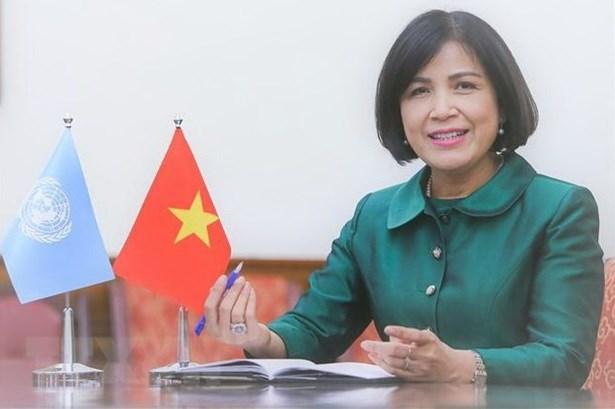 Le Vietnam soutient les mecanismes des droits de l'homme de l'ONU hinh anh 1