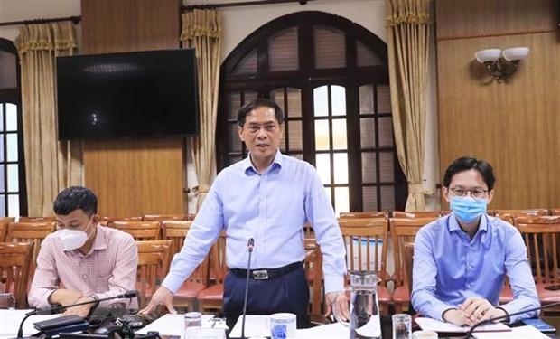 Reunion du groupe de travail du gouvernement sur la diplomatie vaccinale hinh anh 1