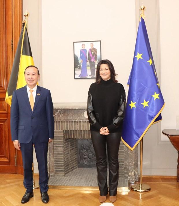Vietnam – Belgique : perspectives de cooperation dans de nombreux domaines hinh anh 1