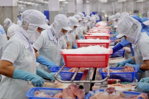 Les exportations de pangas en forte hausse en 2018 hinh anh 1
