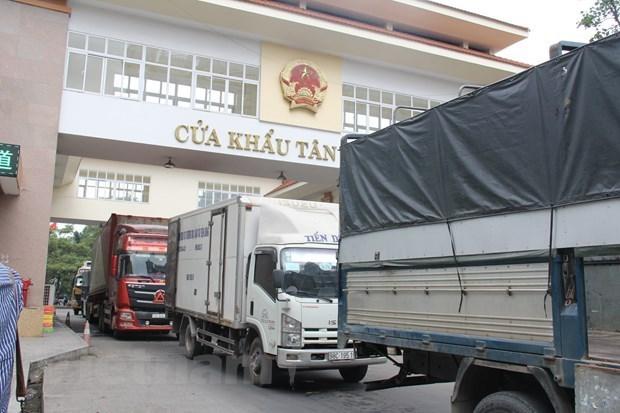 Les efforts se poursuivent pour relancer les exportations vers la Chine hinh anh 1
