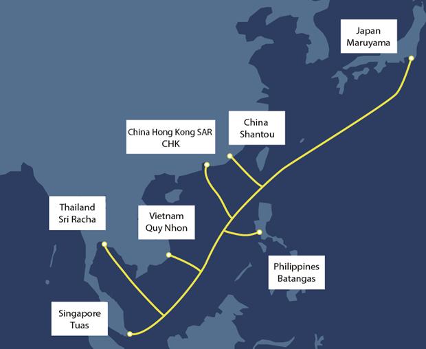 Le Vietnam developpe un nouveau cable sous-marin en Asie-Pacifique hinh anh 1