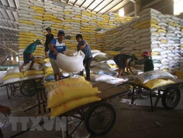 Le Vietnam exporte 4,5 millions de tonnes de riz en huit mois hinh anh 1