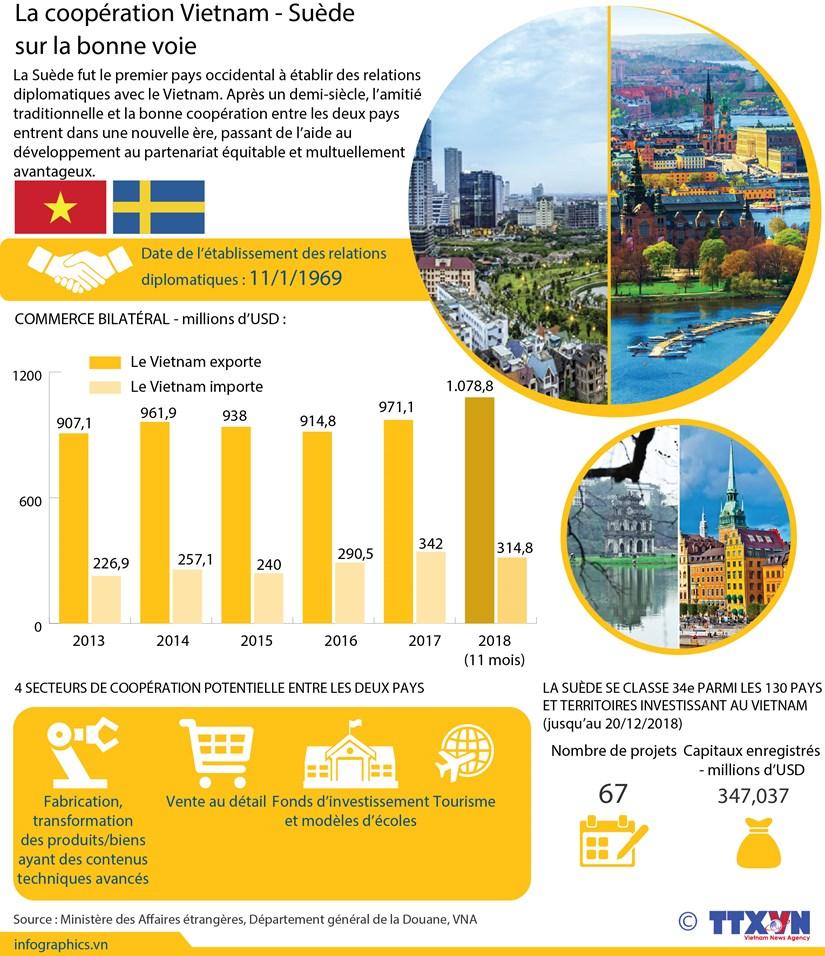 La cooperation Vietnam - Suede sur la bonne voie hinh anh 1