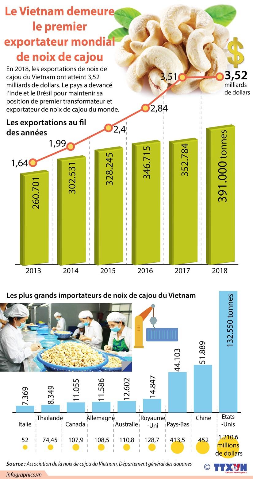 Le Vietnam demeure le premier exportateur mondial de noix de cajou hinh anh 1