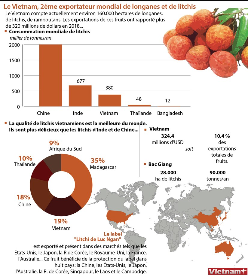 Le Vietnam, 2eme exportateur mondial de longanes et de litchis hinh anh 1