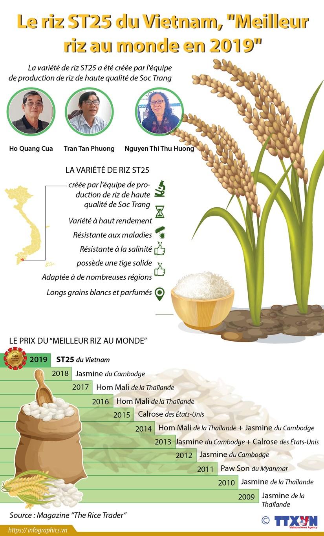 """Le riz ST25 du Vietnam, """"Meilleur riz au monde en 2019"""" hinh anh 1"""