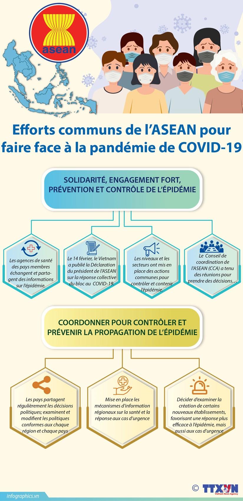 Efforts communs de l'ASEAN pour faire face a la pandemie de COVID-19 hinh anh 1