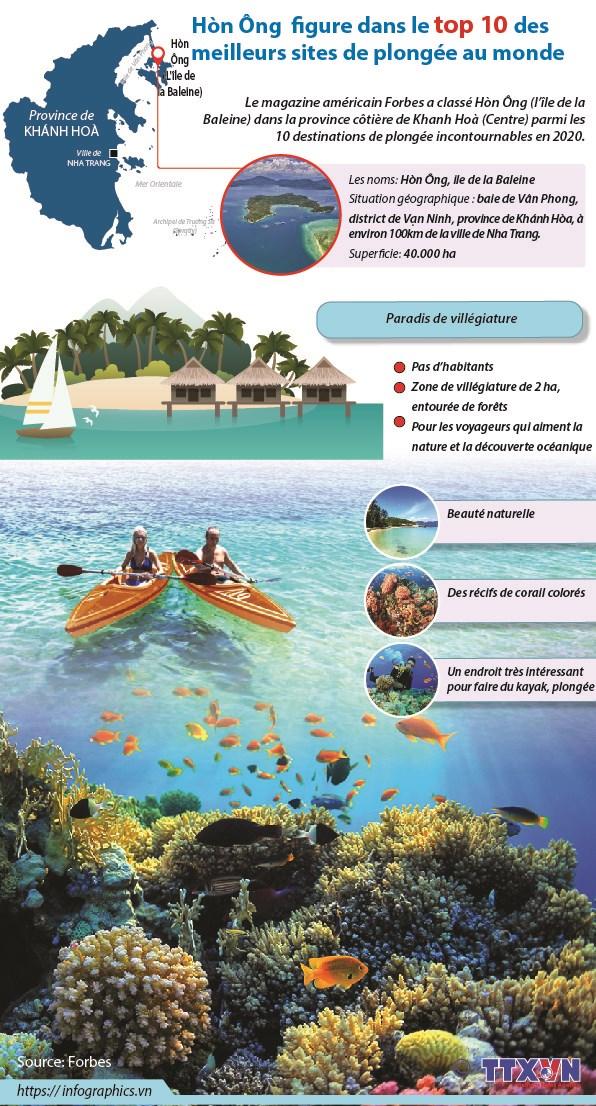 Hon Ong figure dans le top 10 des meilleurs sites de plongee au monde hinh anh 1