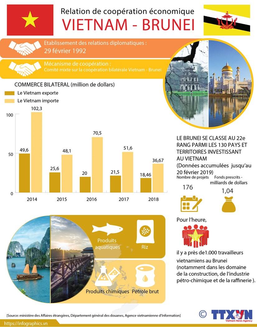 Relation de cooperation economique Vietnam - Brunei hinh anh 1