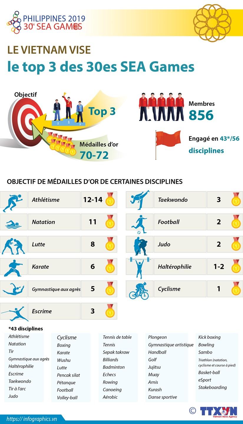 Le Vietnam vise le top 3 des 30es SEA Games hinh anh 1