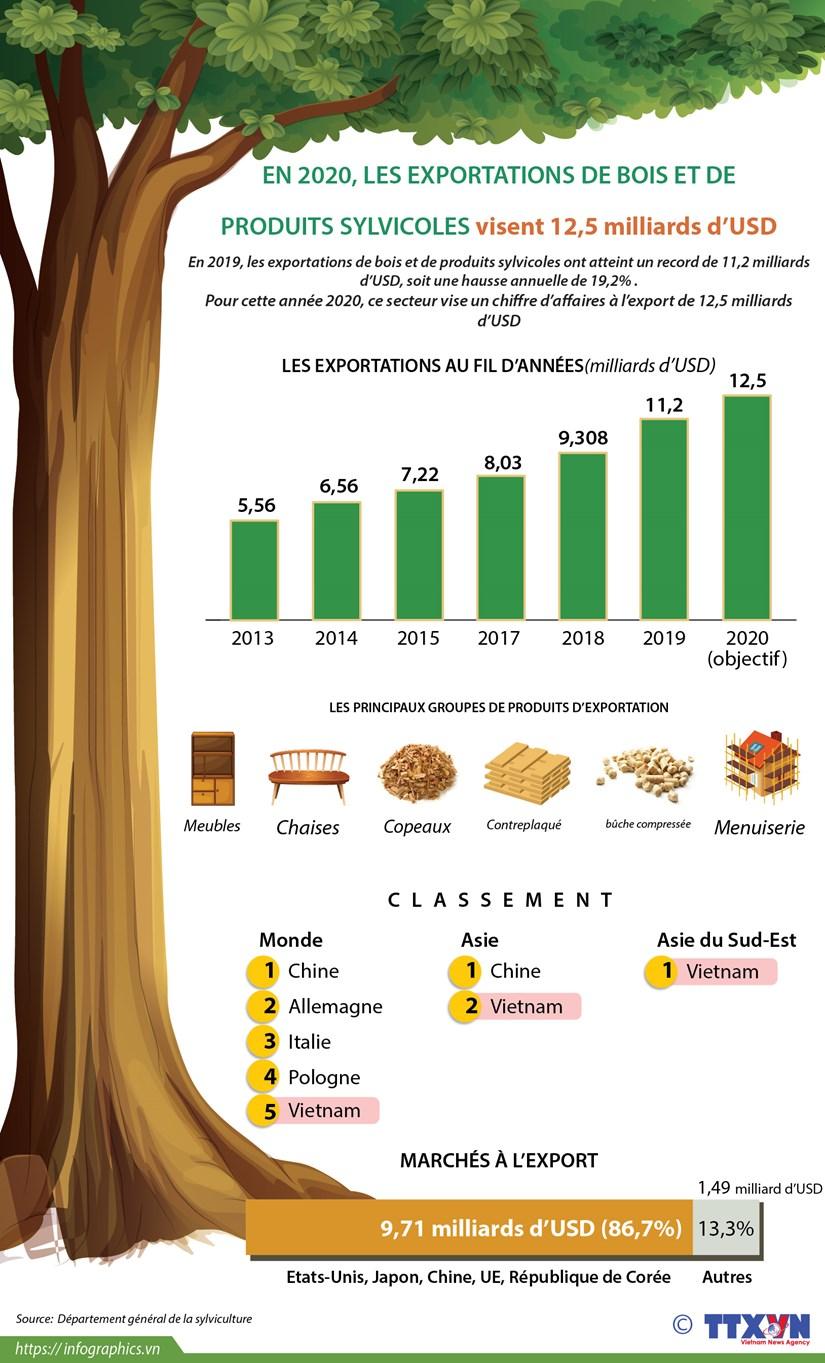 En 2020, les exportations de bois et de produits sylvicoles visent 12,5 milliards d'USD hinh anh 1