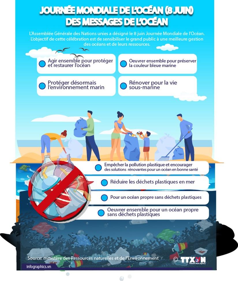 Journee mondiale de l'ocean : des messages de l'ocean hinh anh 1