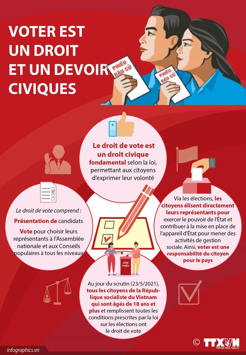 Voter est un droit et un devoir civiques hinh anh 1