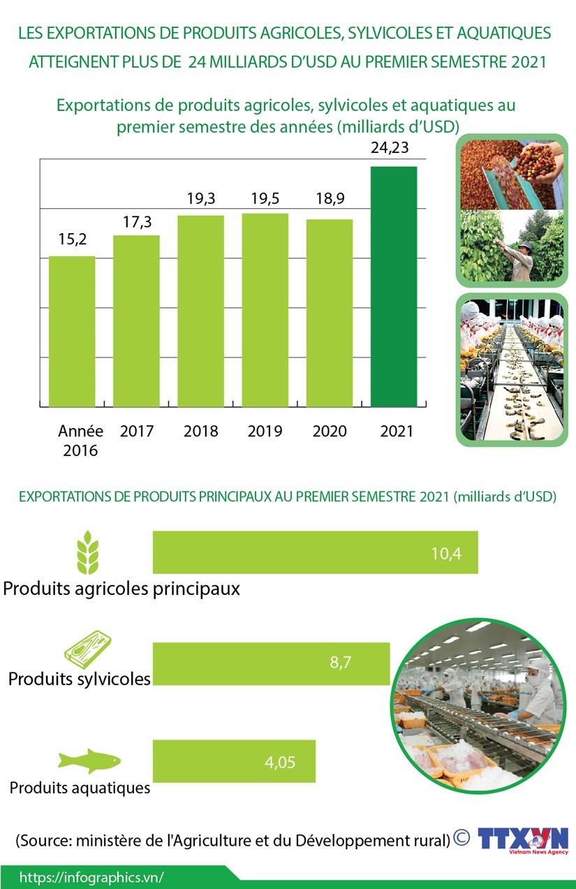 Exportations de produits agricoles, sylvicoles et aquatiques atteignent plus de 24 mlds d'USD hinh anh 1