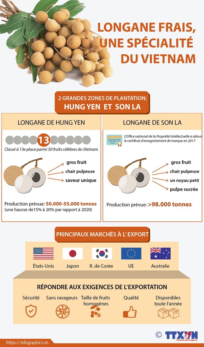Longane frais, une specialite du Vietnam hinh anh 1